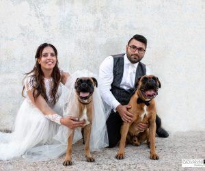 Postmatrimoniale con i cani Sonny e Tamara